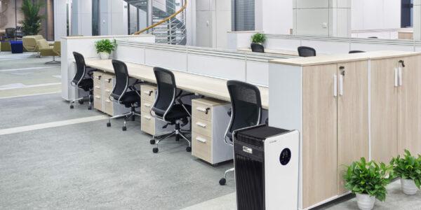 MIDI 8 in office